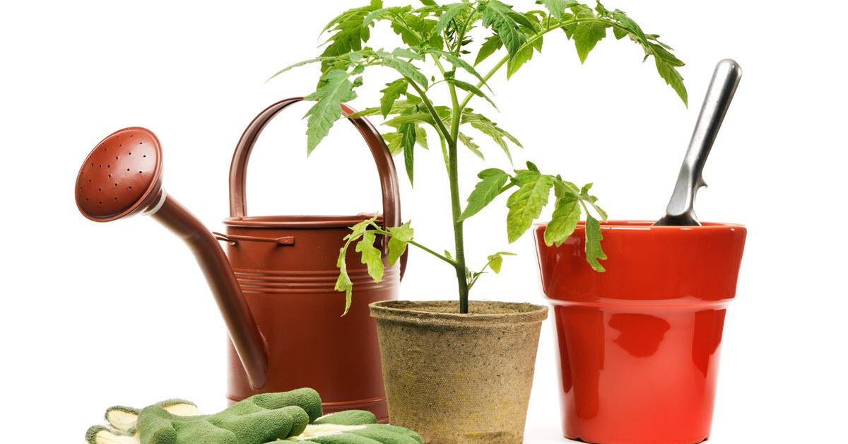 Gardening Supplies1200x628
